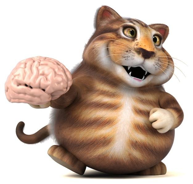 Zabawny kot
