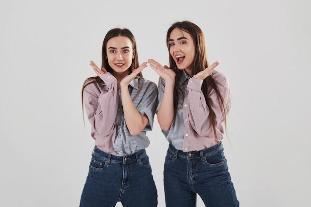 Zabawny nastrój. dwie siostry bliźniaczki stojąc i pozując