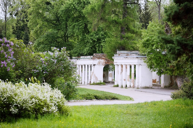 Zabytek, ruiny w parku aleksandryjskim