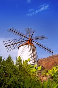 Zabytkowy wiatrak el molino de mogan