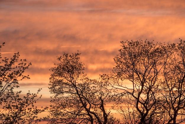 Zachód słońca czerwone niebo z chmurami w tle poziomym