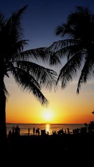 Zachód słońca krajobraz. zachód słońca na plaży. sylwetka palmy na tropikalnej plaży o zachodzie słońca, chiny