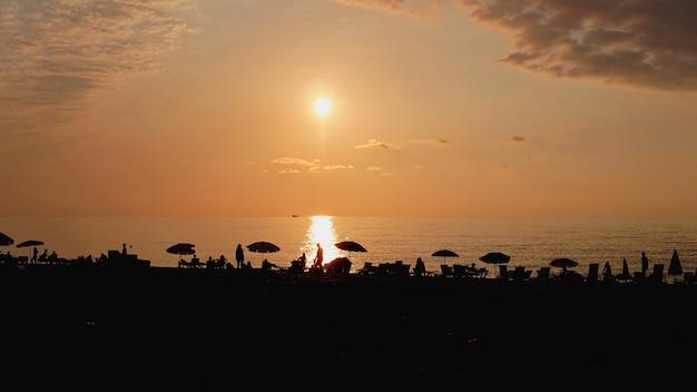 Zachód słońca krajobraz. zachód słońca na plaży. sylwetka palmy na tropikalnej plaży o zachodzie słońca, lato