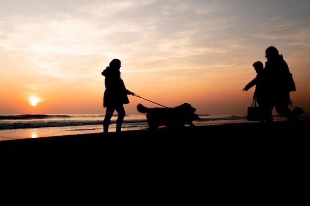 Zachód słońca na pięknej plaży spacerujący z psami w cudowny dzień w portugalii