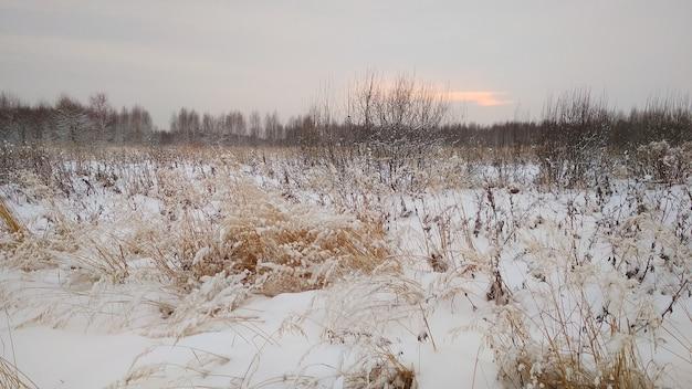 Zachód słońca na polu zimą