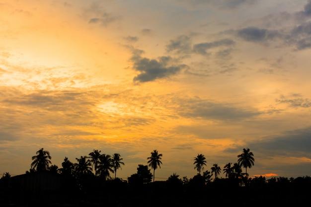 Zachód słońca na tle nieba