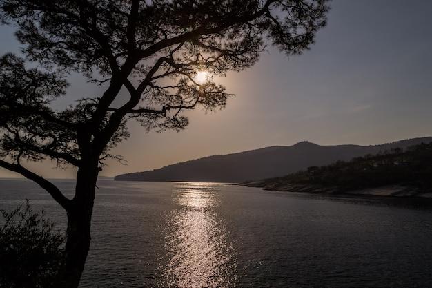 Zachód słońca nad morzem sylwetki drzewa i gór spokój i spokój wyspa thasos grecja
