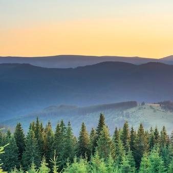 Zachód słońca w górach z lasem i dużym świecącym słońcem