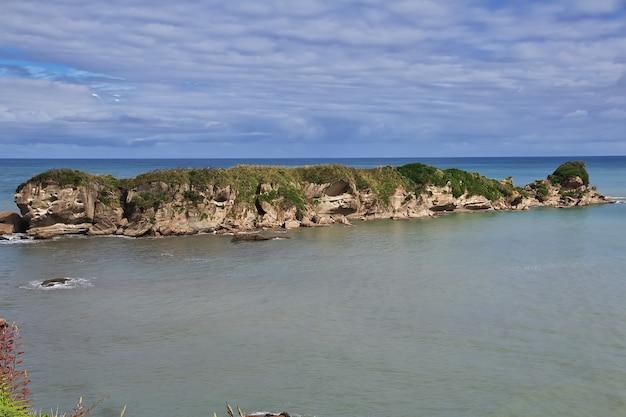 Zachodnie wybrzeże wyspy południowej w nowej zelandii