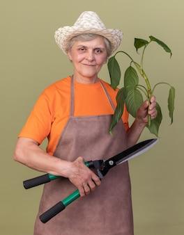 Zadowolona starsza kobieta ogrodniczka w kapeluszu ogrodniczym, trzymająca nożyczki ogrodnicze i gałąź rośliny