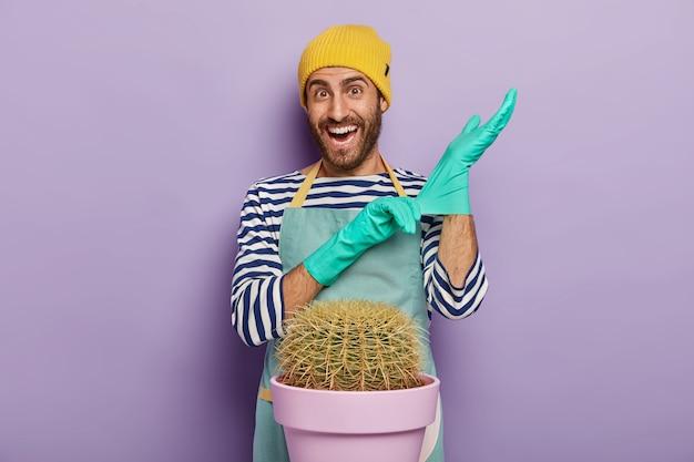Zadowolony nieogolony kwiaciarz lub ogrodnik zakłada gumowe rękawiczki, uśmiecha się radośnie, nosi mundur, idzie przeszczepić kaktusa, pozuje do domu. koncepcja ogrodnictwa i sadzenia