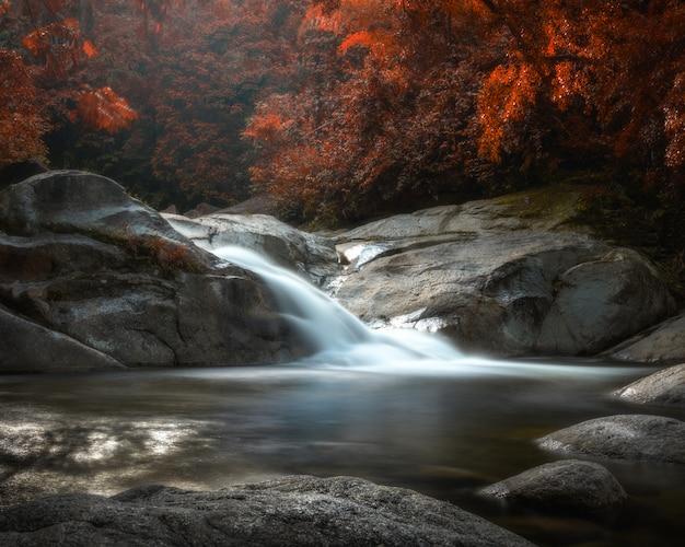 Zadziwiająca siklawa w kolorowym jesień lesie w tajlandia.