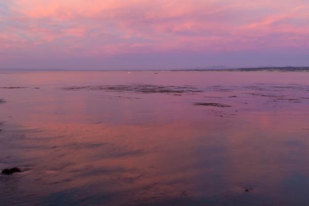 Zadziwiający różowy zmierzch nad zatoką w monterey, kalifornia
