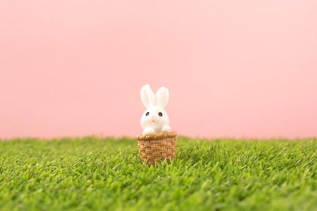 Zajączek na trawie