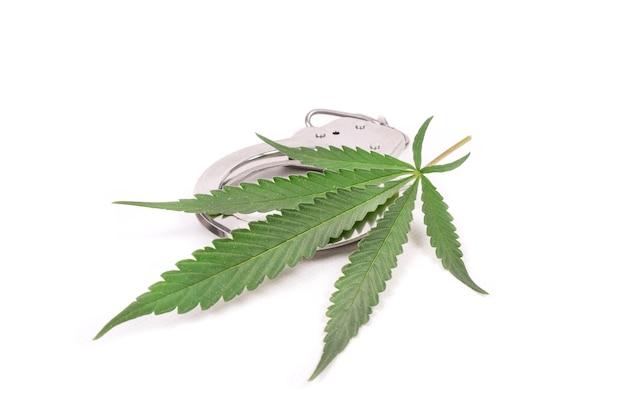 Zakaz nielegalnej uprawy marihuany, kajdanek i liści konopi.