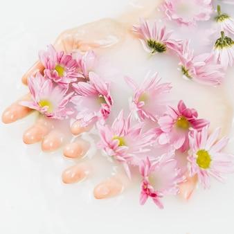 Zakończenie kobiety mokra ręka z różowymi kwiatami w jasnej białej wodzie