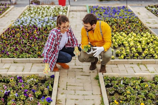 Zakochana para kucająca na świeżym powietrzu i dbająca o kwiaty. mężczyzna trzyma garnek z kwiatami.
