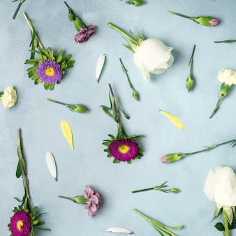 Zakończenia tło z stokrotkami i różanymi kwiatami