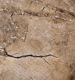 Zakończenie beli drewniany drzewny tło