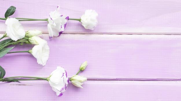 Zakończenie biali kwiaty na drewnianym deski tle