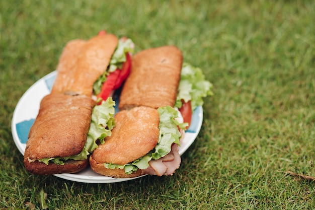 Zakończenie duży talerz z apetyczną świeżą kanapką na zielonej trawie