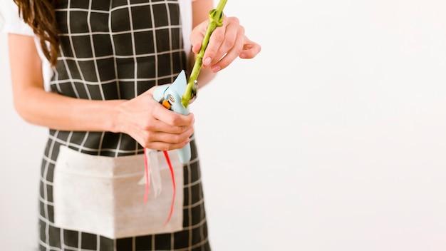 Zakończenie kobiety cięcia kwiat z nożycami