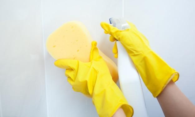 Zakończenie kobiety cleaning z gąbki i detergentu kiścią