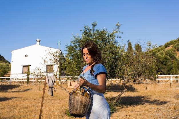 Zakończenie kobiety mienia wiosny cebula w koszu