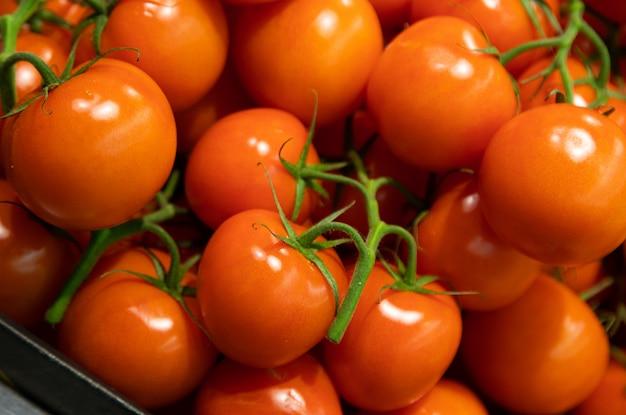 Zakończenie łagodnie czerwoni krzak pomidory w lug pudełku