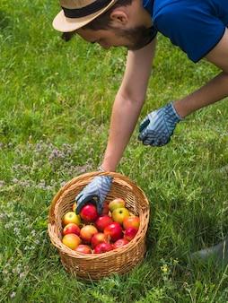 Zakończenie mężczyzna zbieracki czerwony jabłko w koszu