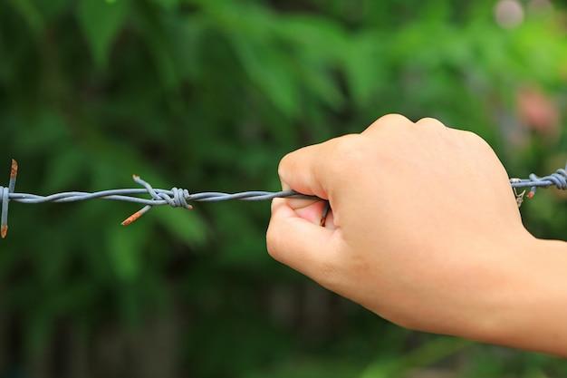 Zakończenie ręki mienia barbeta druciany ogrodzenie przeciw natury zieleni tłu