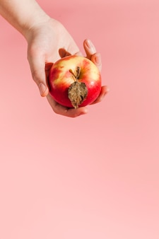 Zakończenie ręki mienia jabłko