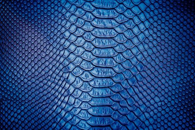Zakończenie up luksusowy wąż skóry tekstury use dla tła