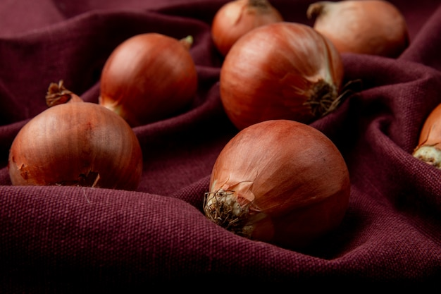 Zakończenie widok cebule na burgundy tle