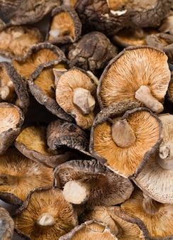 Zakończenie wysuszone shiitake up ono rozrasta się na drewnianym tle