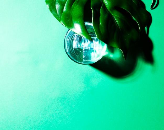 Zakończenie zielony liść nad szkłem woda z kostkami lodu na zielonym tle