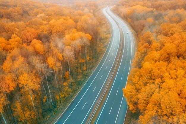 Zakrzywiona autostrada zwrócona w stronę horyzontu pośród żółtego jesiennego lasu