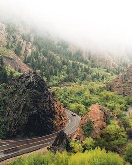 Zakrzywiona wąska droga z samochodem w lesie w otoczeniu zieleni