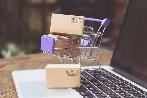 Zakupy online lub koncepcja usługi dostawy e-commerce