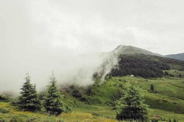Zalesione zbocze górskie z nisko położonymi chmurami