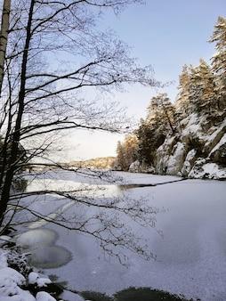 Zamarznięte jezioro otoczone drzewami i skałami pokryte śniegiem w słońcu w norwegii