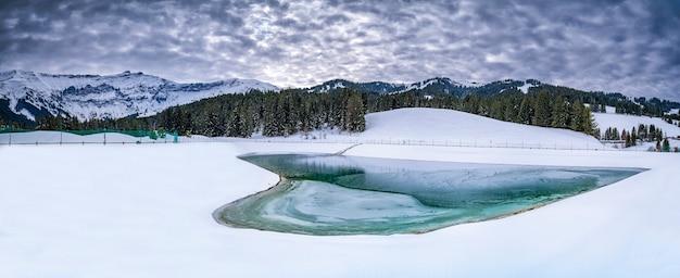 Zamarznięte jezioro z zimnymi drzewami