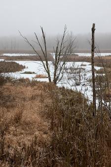 Zamarznięte jezioro zimą