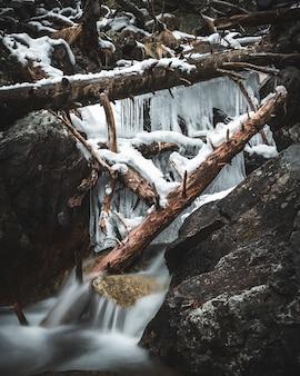 Zamarznięty wodospad w lesie z powalonymi drzewami i lodowymi stalaktytami nakręconymi w długim czasie ekspozycji