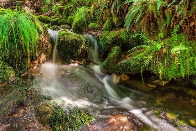 Zamazany obraz z bliska wodospad małej rzeki, długi czas ekspozycji, piękny krajobraz naturalny, tło