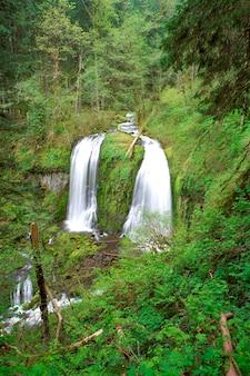 Zamazany ruch strzelał strumień i siklawy w dalekim obszar lesistym
