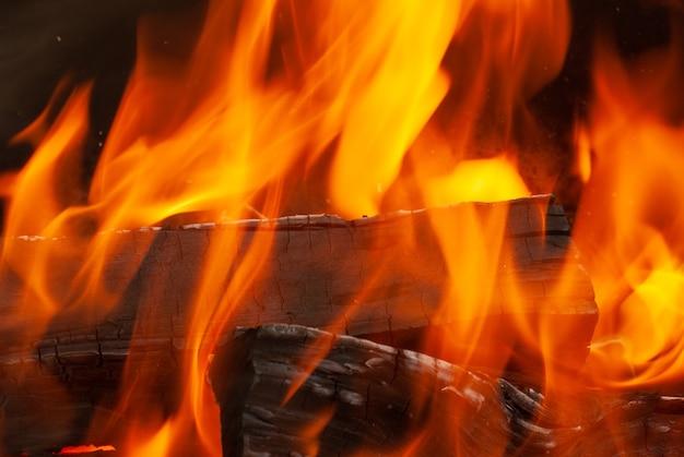 Zamknąć widok. ogień płonący las tło z miejsca kopiowania. może być wykorzystany do twojej kreatywności.