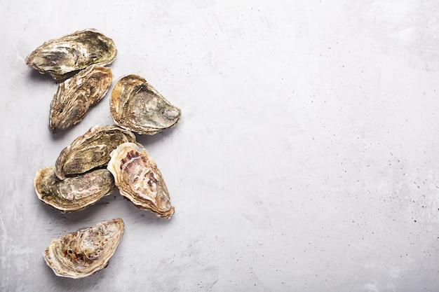 Zamknięte ostrygi na popielatym betonowym tle. zdrowe owoce morza. skopiuj miejsce