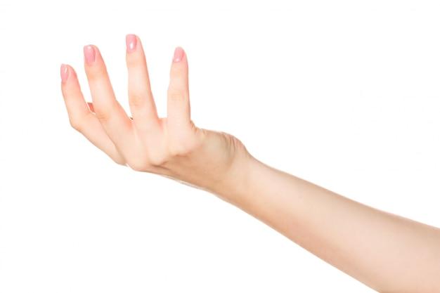 Zamkniętej żeńskiej ręki odosobniony zamknięty