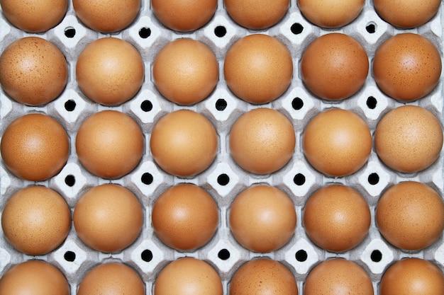 Zamknij całe jajka w pudełku. jaja kurze wiele. nieostrość. widok z góry